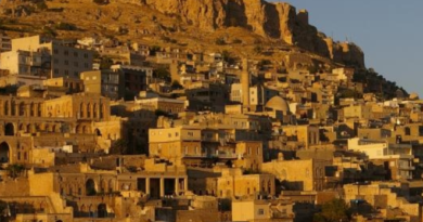 Mardin Stone Houses Turkey